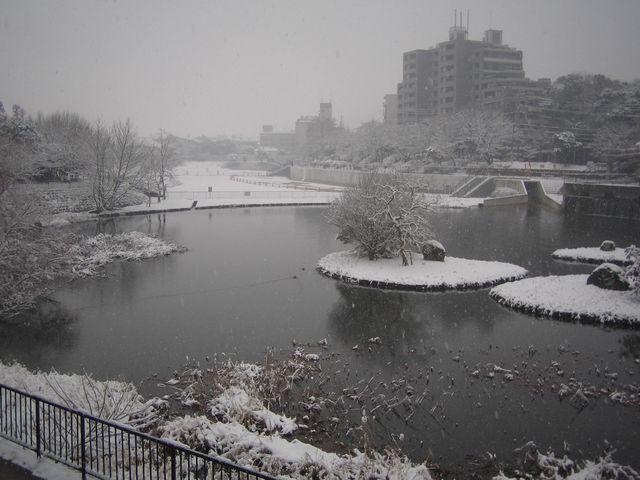 2012yuki.JPG
