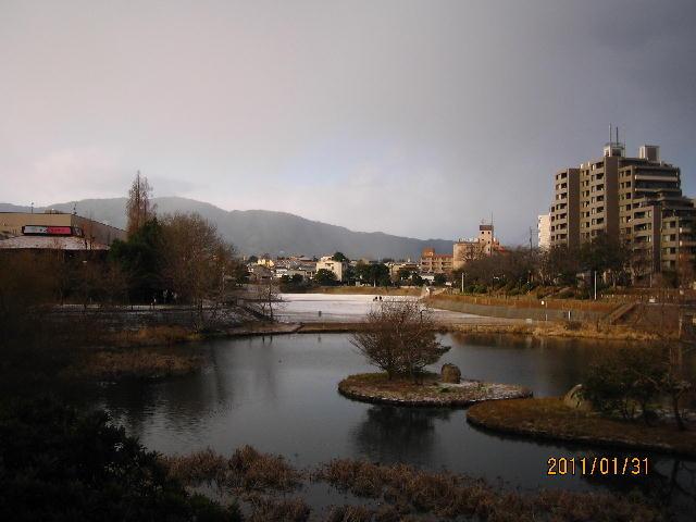 yuki2011.jpg